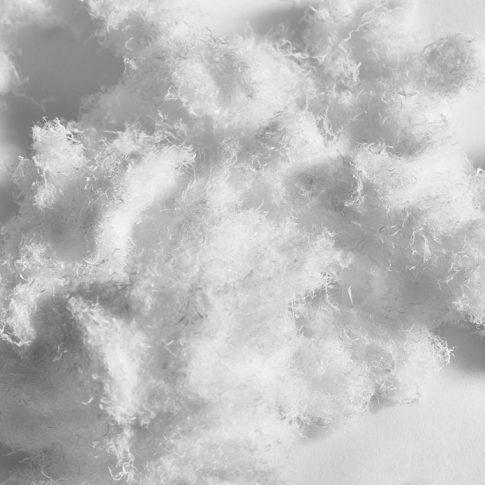 Polyethylenfaser als Füllstoff - Bild