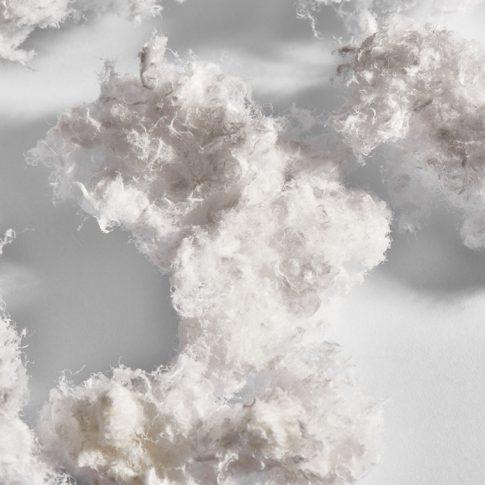 Zellwolle als Pulpe - Bild